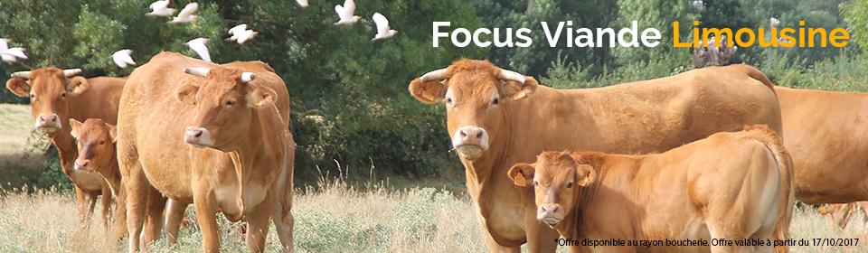 Focus viande Limousine Leclerc Ancenis